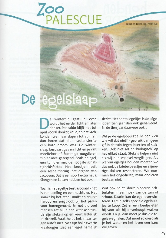 4 ZooPalescue Egelslaap_klein