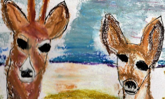 Zoo Palescue No.8: De het eenree