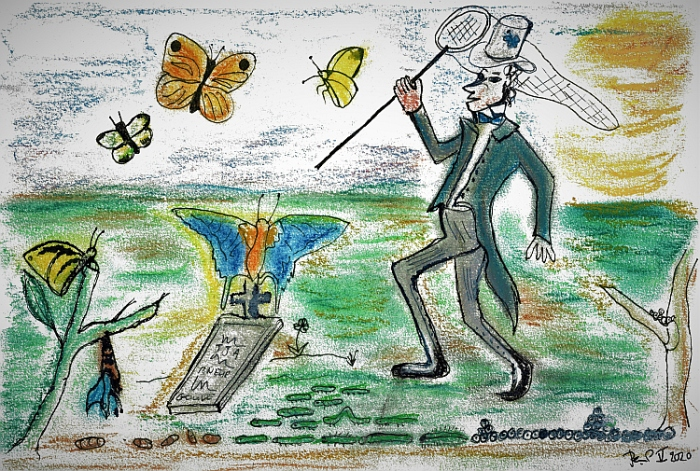 Palescue Vlinder Meester Prikkebeen